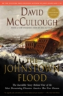 Johnstown Flood - eBook