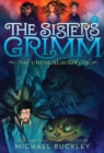 The Unusual Suspects (The Sisters Grimm #2) : 10th Anniversary Edition - Book
