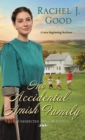 His Accidental Amish Family - eBook