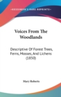Voices From The Woodlands: Descriptive Of Forest Trees, Ferns, Mosses, And Lichens (1850) - Book