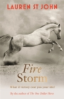 The One Dollar Horse: Fire Storm : Book 3 - Book
