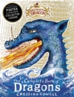 How to Train Your Dragon: Incomplete Book of Dragons - Book