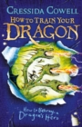 How to Train Your Dragon: How to Betray a Dragon's Hero : Book 11 - eBook