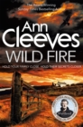 Wild Fire - eBook