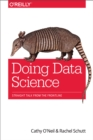 Doing Data Science : Straight Talk from the Frontline - eBook