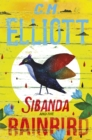 Sibanda and the Rainbird - eBook