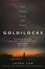 Goldilocks : The boldest high-concept thriller of 2020 - eBook