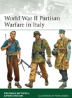 World War II Partisan Warfare in Italy - Book