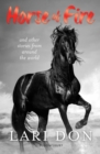 Horse of Fire : and other stories from around the world - Book