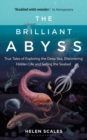 The Brilliant Abyss : True Tales of Exploring the Deep Sea, Discovering Hidden Life and Selling the Seabed - Book