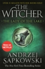 The Lady of the Lake : Witcher 5 - Now a major Netflix show - Book