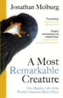 A Most Remarkable Creature : The Hidden Life and Epic Journey of the World s Smartest Bird of Prey - eBook