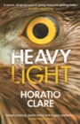 Heavy Light : A Journey Through Madness, Mania and Healing - eBook