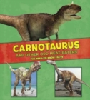 Dinosaur Fact Dig Pack B of 4 - Book