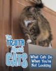 The Truth about Cats : What Cats Do When You're Not Looking - Book