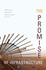 The Promise of Infrastructure - Book