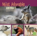All About Animals: Most Adorable Animals in the World - Book