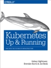 Kubernetes: Up and Running : Dive into the Future of Infrastructure - eBook