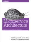 Microservice Architecture : Aligning Principles, Practices, and Culture - eBook