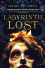 Labyrinth Lost - Book