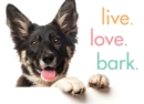 Live. Love. Bark. - Book