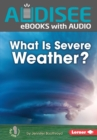 What Is Severe Weather? - eBook