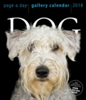 Dog Page-A-Day Gallery Calendar 2018 - Book