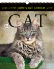 2019 Cat Gallery Wall Page-A-Week Gallery Wall Calendar - Book