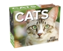 Cats 2022 Mini Day-to-Day Calendar - Book