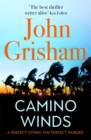 Camino Winds : The Ultimate Summer Murder Mystery from the Greatest Thriller Writer Alive - Book