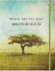 Where Are You, God Flex Journal : Learning to Trust When Times Are Tough - Book