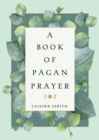 A Book of Pagan Prayer - Book
