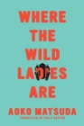 Where the Wild Ladies Are - eBook