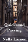 Quicksand and Passing - Book