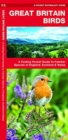 Great Britain Birds : A Folding Pocket Guide to Familiar Species of England, Scotland & Wales - Book