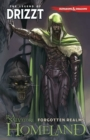 Dungeons & Dragons: The Legend of Drizzt Volume 1 - Homeland - Book