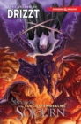 Dungeons & Dragons: The Legend of Drizzt Volume 3 - Sojourn - Book
