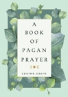A Book of Pagan Prayer - eBook