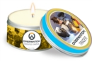 Overwatch: Tracer Scented Candle : Small, Citrus 2 oz - Book