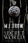 Secret World : A Tudor mystery featuring Christopher Marlowe - eBook