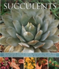 Succulents - Book