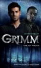 Grimm: The Icy Touch - Book