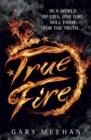 The True Trilogy: True Fire : Book 1 - Book