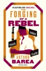 The Forging of a Rebel - eBook