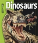 Insiders - Dinosaurs - Book