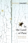 In the Land of Pain - Book