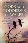 Pagan Portals - Gods and Goddesses of Wales : A practical introduction to Welsh deities and their stories - eBook