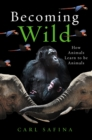 Becoming Wild : How Animals Learn to be Animals - Book