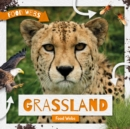 Grassland Food Webs - Book
