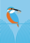 I Like Birds: River, Estuary & Shore : Boxed set of 3 bird-themed journals - Book